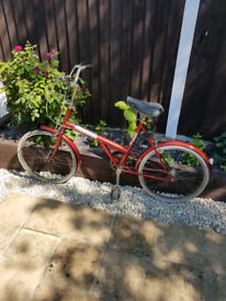 Raleigh triumph classic retro pushbike barn find