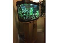 Fish tank box (64 litre)