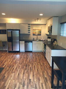 1 bedroom walkout executive suite *79/night