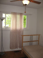 Very Clean Room in a single large house rent by day week month.