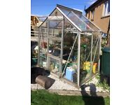 6ft x 4ft greenhouse.