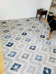 8 x 10 Area Rug - Blue and Grey Tones