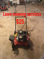 Lawn Mowing & Brush Removal services
