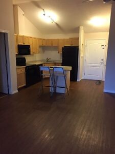 Amazing 2bedrooms in great location available September 1