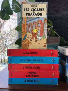 Collection de films de Tintin VHS