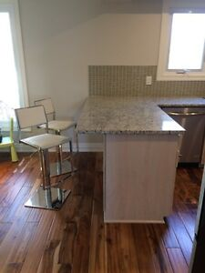 ***KITCHEN*** Granite countertop and cabinets for sale.