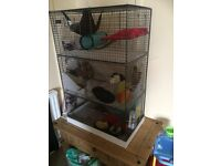 Rat/chinchilla/degu cage (rats not included)