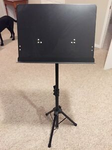 Music stand  Kingston Kingston Area image 1