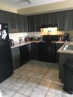 Sublet available in beautiful 2bdrm condo Dec 1st (negotiable)