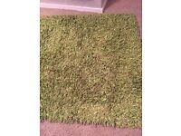 Large TK Maxx green rug