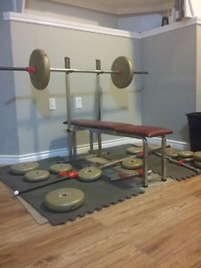 Bench, Bars, and Weights