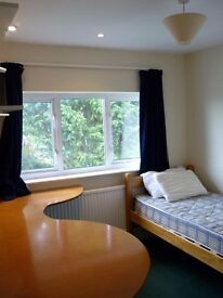 2 Single rooms for rent in Peasedown St John