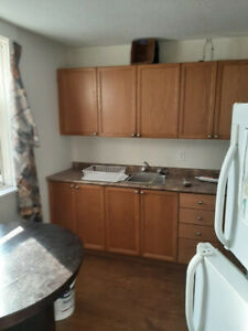 Nice 1 bedroom apartment on Downie and Parkhill