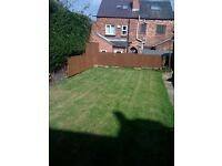 2 double rooms in 4 bed house share in Walkley