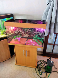 Tropical Fish tank 125 litres with stand full set up