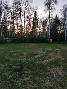 1 acre lot