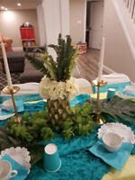 Set up spa and princess parties with full decor & services!
