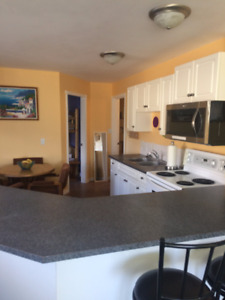 Suite for rent in Eagle Bay