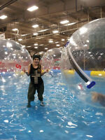 Special Event Staff wanted for Whoop Up Days - Waterball Event!