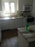 <15mins walk to Fleming. Newly Renovated Student House