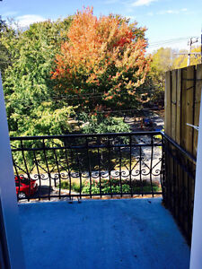 Beautiful Furnished Top Floor 4 1/2 on Laurier - Plateau - 1400$