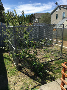 Dog Chain Link Fence