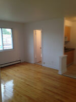 ►► Newly Renovated 3 1/2 in Verdun w/ ONE FREE MONTH!