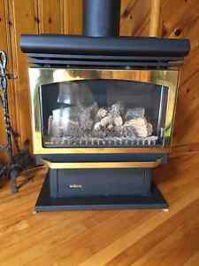 Beautiful Majestic Propane Fire Place