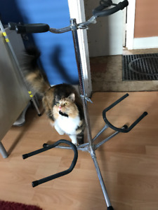 SOLD: Double Guitar Floor Stand *(curious kitty not included)