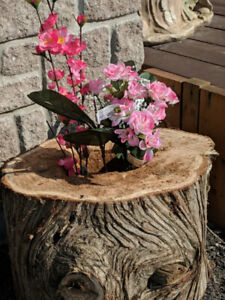 WOOD SLICES,PLANTERS & SMALL BOARDS
