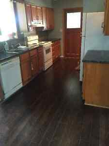Completely Renovated Large 2 Bedroom Modular Home London Ontario image 9