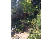 Studio basement N1 Hackney with garden