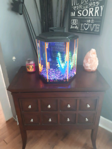 10 Gallon Fish Tank Aquarium