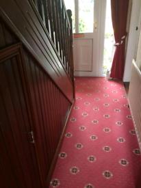 Spotless Hall, Stairs & Landing Carpet