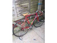 Vintage 1978 Peugeot Equipe Road Racing Bike 10 Speed