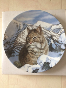 Collector Plate - Lynx