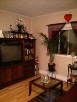 Centrally Located 1 Bedroom Bracebridge Apartment - $850