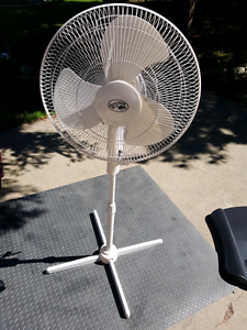 """Stay Cool with this 16 """" oscillating fan."""