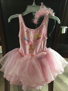 Disney Princess Dress and Crown