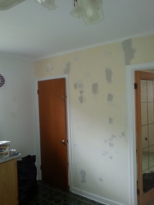 Affordable painter for condo's, apartments, and houses
