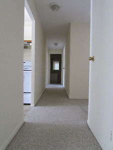 BEAUTIFUL 2 BD. APT.AVAILABLE DEC. 1 INCL. 6 APPLIANCES Kitchener / Waterloo Kitchener Area image 6