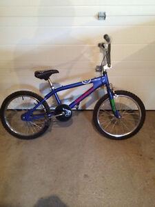 20 inch Demolition BMX Bike