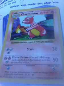 Rare 1999 Pokemon Cards Pikachu, Charmeleon, mint condition