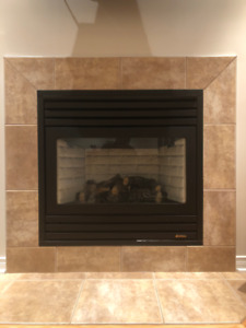 Gas Propane Fireplace Foyer Gas Propane