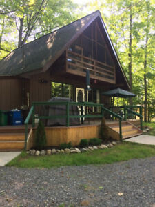 Spring getaway 3bdrm A Frame Cottage-near Bancroft- pet friendly