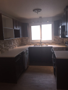 Newly Renovated 4 Bedroom 2 Bathroom Home for Rent
