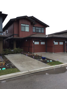 Near new home in TSawwassen Springs for Rent
