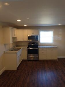 new one bedroom apartment for rent