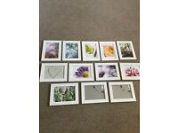 Ikea photo frames x 12