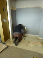 Experienced Cleaner with Biohazard Licencse Free estimate!!!
